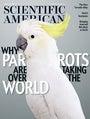 Scientific American Current Issue